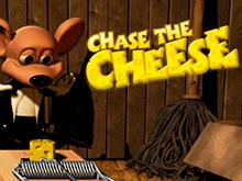 Преследуй Сыр